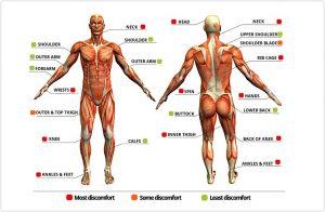 pain chart